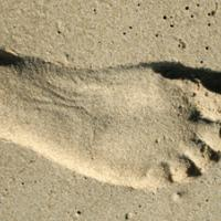 Step onto the beach!